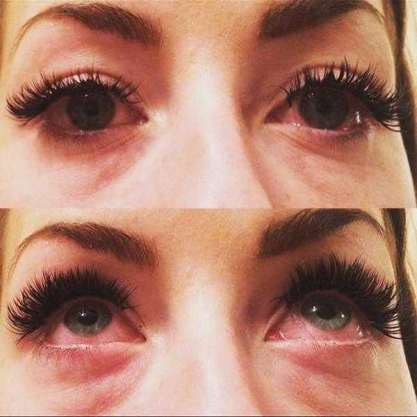 Blink Lashes Mink Eyelash Extensions Classifieds 276491