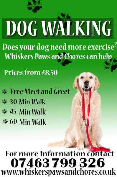 Dog Walking from 8.50 this January 2018