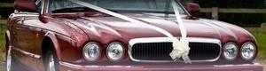Limo hire. Chauffeur driven Jaguar XJ8