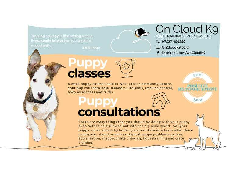 Puppy Training Classes in West Cross, Swansea